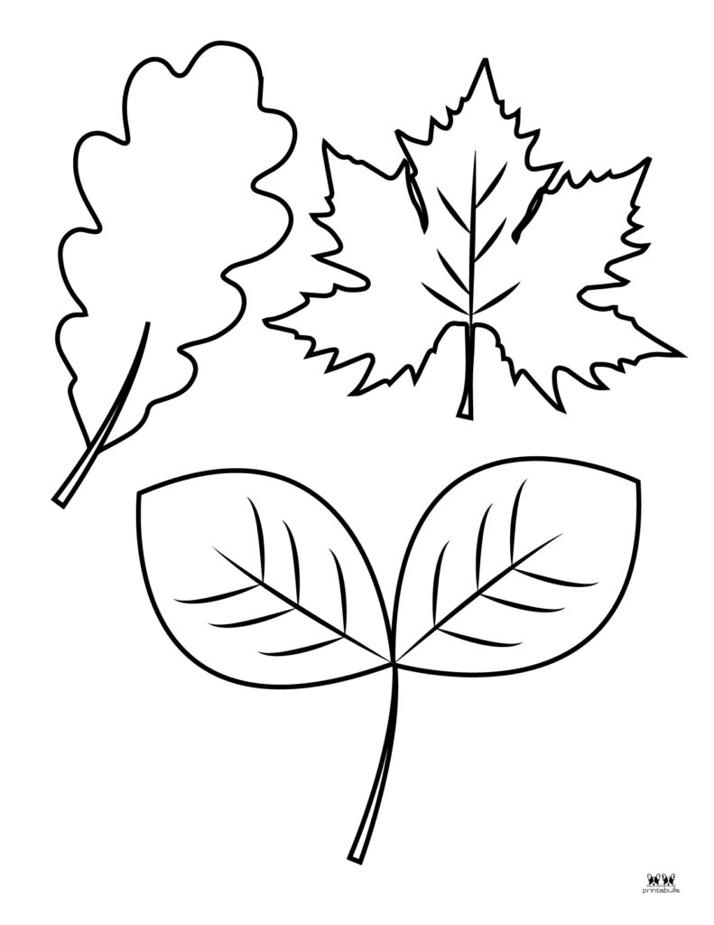Printable Leaf Template-Page 30