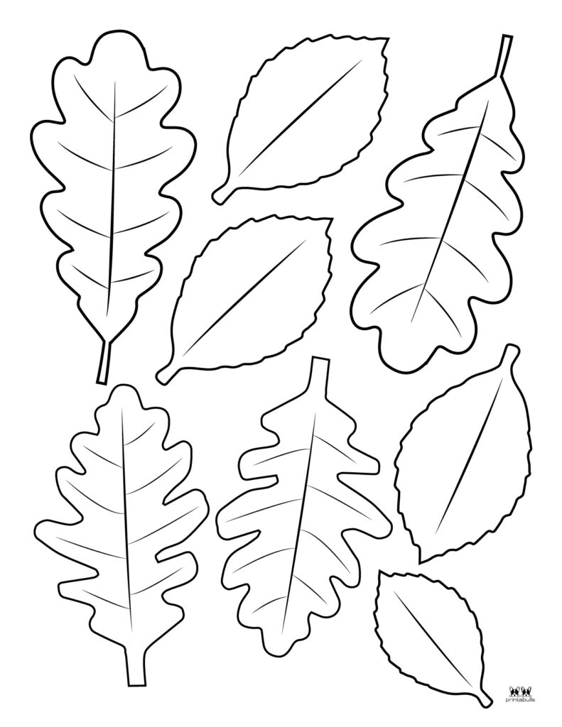 Printable Leaf Template-Page 33