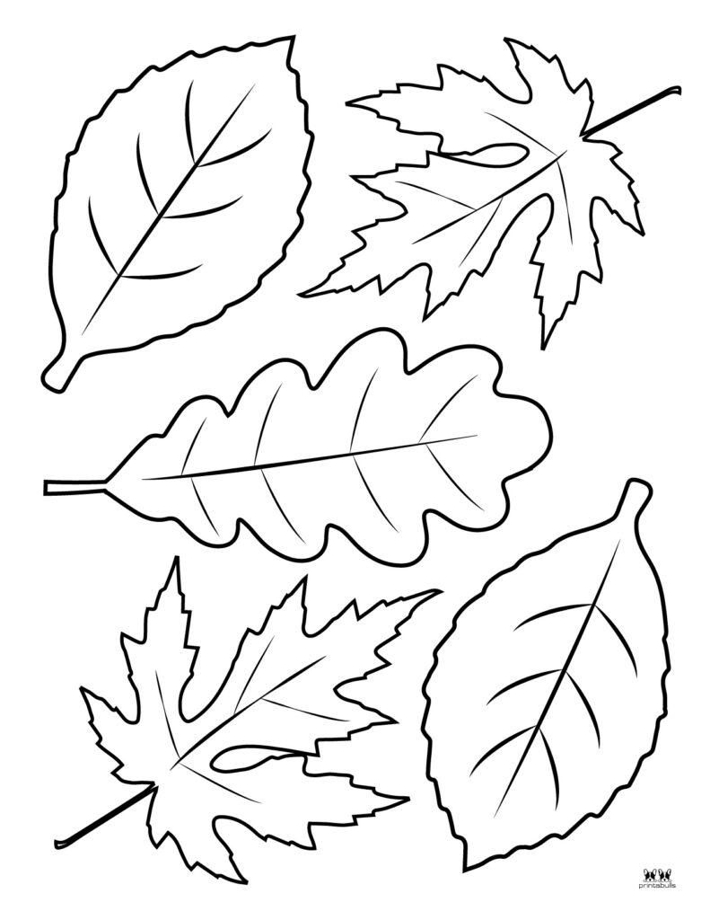 Printable Leaf Template-Page 40