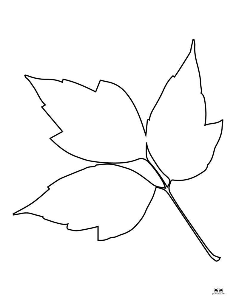 Printable Leaf Template-Page 6
